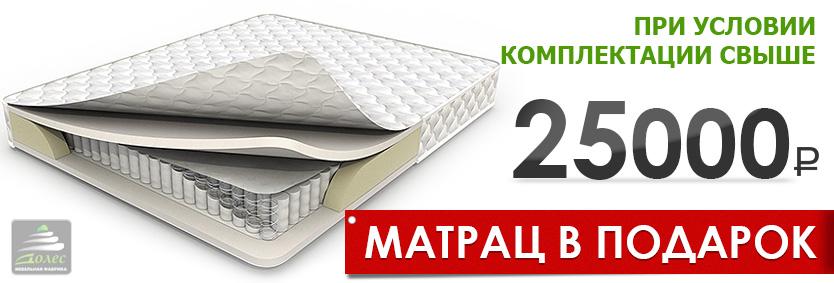 При условии комплектации спалльной мебели свыше 2500 рублей - матрац в подарок